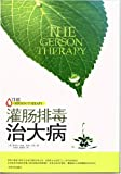 The Gerson Therapy : The Proven Nutritional Program for Cancer and Other Illnesses (Chinese Edition)