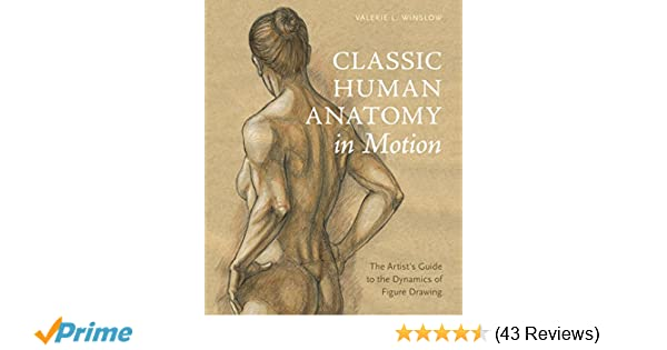 Classic Human Anatomy in Motion: The Artist's Guide to the