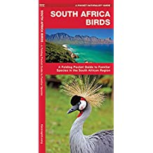 South Africa Birds: A Folding Pocket Guide to Familiar Species