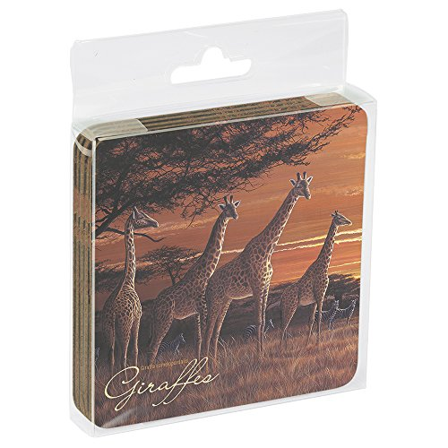 Eco Coaster Set - 2