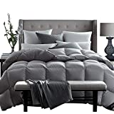 Globon Fusion White Goose Down Comforter King 60oz Fill Weight, 600 Fill Power, 100% Cotton 300 Thread Count Shell, Hypoallergenic, with Corner Tabs, Heavy Weight for Winter, Grey