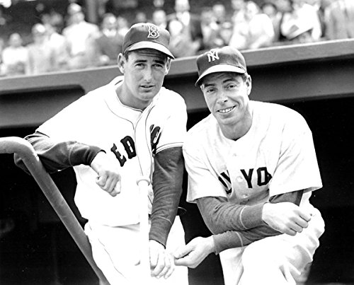 New York Yankees Joe DiMaggio and Boston Red Sox Ted Williams Together at Fenway Park in 1951 8x10 Photograph (Sports Photographs)