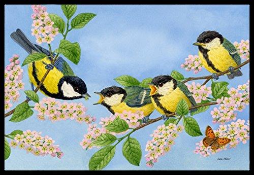 Caroline's Treasures ASA2203MAT Great Tit Family of Birds Indoor or Outdoor Mat, 18″ x 27″, Multicolor Review