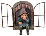 Red Carpet Studios 49061 Window Tree Face Giggling Gnome Review