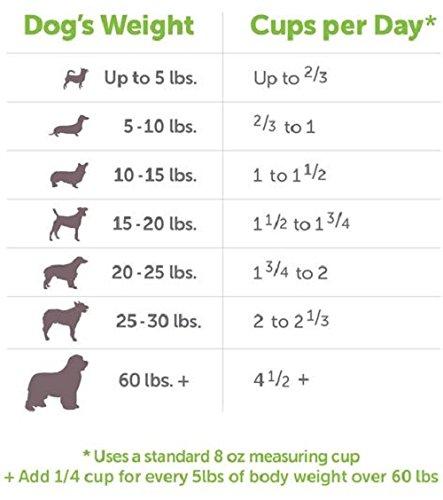 V Dog Vegan Kibble Dry Dog Food