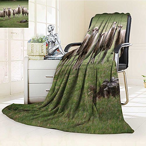 Luminous Microfiber Throw Blanket a herd of sheep gather to pose for a photograph on a new zealand golf course Glow In The Dark Constellation Blanket, Soft And Durable Polyester(90