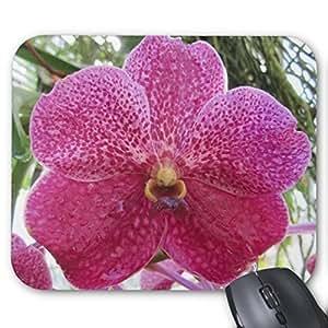Pillow Perfect Office Mousepads Pink Vanda Orchid Mousepad