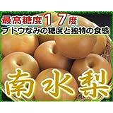 最高糖度17度 ブドウなみの甘さと独特の食感 長野産 南水梨 1.5キロ 贈答用 大玉4~5個入 梨 南水 和梨