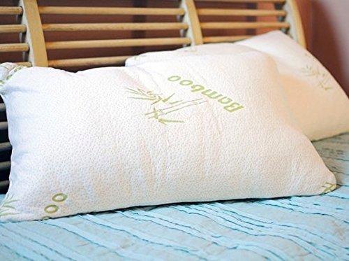 memory-foam-pillow-rey-mejor-que-marriott-y-el-dominio-diastarz-malouf-memory-foam-pillow-z-sealy-te