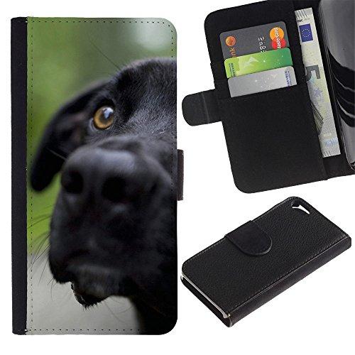 LASTONE PHONE CASE / Luxe Cuir Portefeuille Housse Fente pour Carte Coque Flip Étui de Protection pour Apple Iphone 5 / 5S / Black Labrador Retriever Muzzle Dog Pet