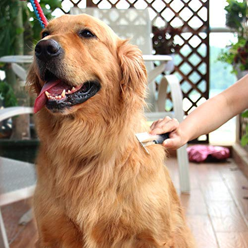 SW Dog Brush Dog Grooming Comb Metal Dog Comb Double-Sided Cat Comb Anti Shedding Brush, Stainless Steel, Grooming Tool for Medium, Large and Small Pets