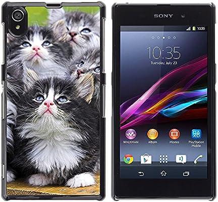 Carcasa de piel con tapa para teléfono concha // M00001127 Cats ...