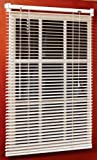 Best Window Blinds - Magne 40-Inch Vinyl Mini Blind with 1-Inch Slats Review