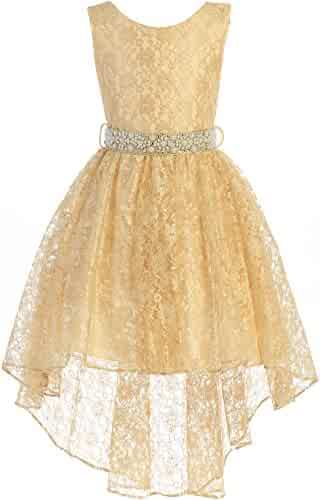 0c8d5c185 Little Girls Sleeveless Floral Lace Rhinestone High Low Party Flower Girl  Dress
