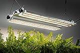 Phantom PHL440LMP LED, 440W, 100-277V, MP Spectrum