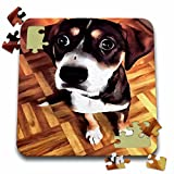 "Marty The Soulful Eyed Dog Puzzle is a fun and enjoyable way to pass the time. This 70 piece jigsaw puzzle measures 10"" x 10"" when assembled and features a back stand for display. Allowing you the choice to leave and display your finished puz..."