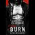 Slow Burn: A Bad Boy Romance (Assassins Book 1)