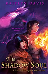The Shadow Soul by Kaitlyn Davis ebook deal