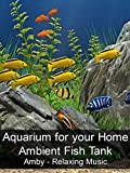 Aquarium for your Home - Ambient Fish Tank - Amby - Relaxing Music