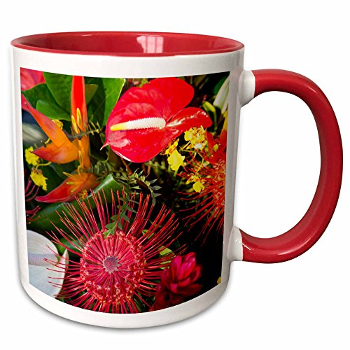 3dRose Danita Delimont - Hawaii - Kohala Kamehameha Day Celebration, Hawaii, USA - US12 DPB2698 - Douglas Peebles - 15oz Two-Tone Red Mug (mug_144208_10) (Lei Two Flower Tone)