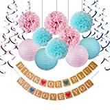 Gender Reveal Decorations Baby Shower Decorations with ''Pink or Blue'' Banner Tissue Pom Poms Paper Lanterns Foil Hanging Swirl Decorations Baby Pink and Blue Decorations Gender Reveal Party Supplies