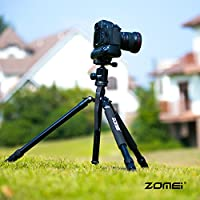 zomei-z818 tripod from Zomei