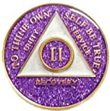 1 Year Purple Glitter Tri-Plate Alcoholics Anonymous Medallion- AA Sobriety Chip