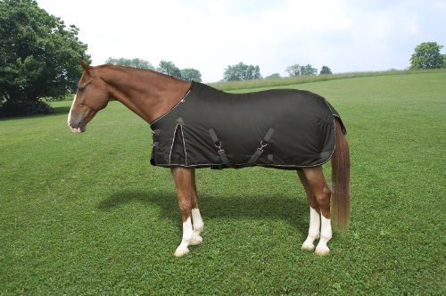 Kensington Platinum Collection Light Weight Turnout Horse Blanket, Onyx, (Onyx Horse)