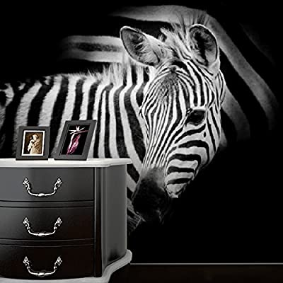 XLi-You 3D modern art personalized TV background wall paper Hyun off black and white zebra wall painting