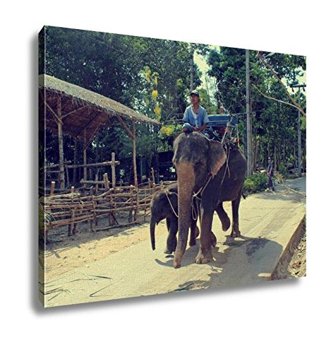 Ashley Canvas Koh Samui Thailand 2 April 2013 Thai Man Riding Elephant His Wall Art Decoration Picture Painting Photo Photograph Poster Artworks, 20x25 by Ashley Canvas