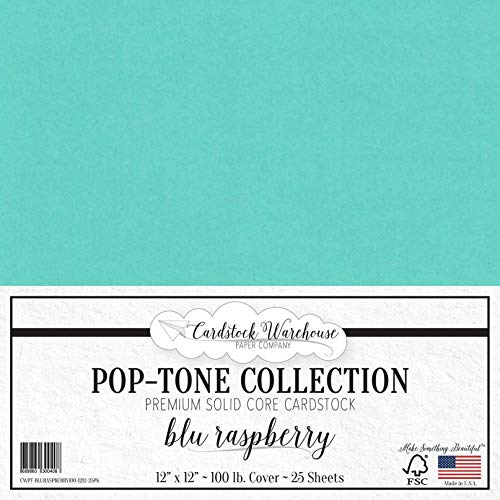 (BLU Raspberry/Teal Cardstock Paper - 12 x 12 inch 100 lb. Heavyweight Cover - 25 Sheets from Cardstock Warehouse)