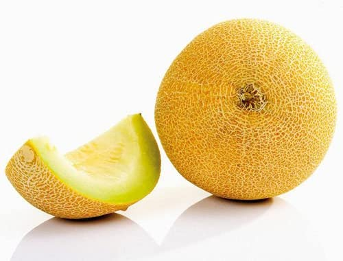 AGROBITS 10 Seed Cantaloupe Cucumis Melo VAR. Saccharinus Fruta ...