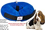 Best Dog Cones - Inflatable Dog Collar | Recovery Cone | After Review