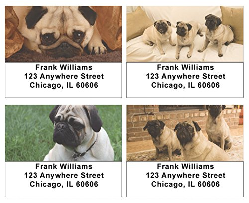 Perfect Pugs Address Labels (Face Personalized Address Labels)