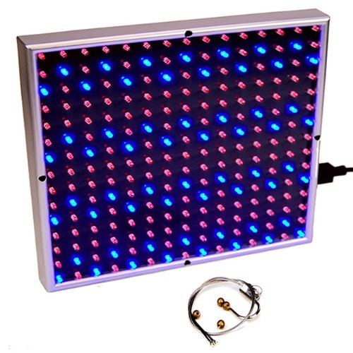 Nasa Led Light Plant - 8