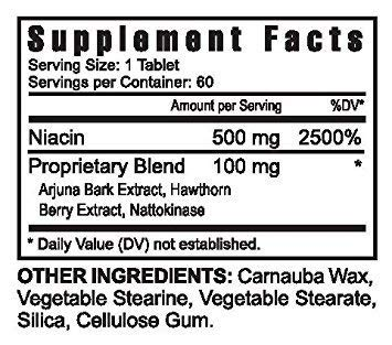 Niacin Plus Herbal Extracts and Enzymes - 60 500mg Tabs