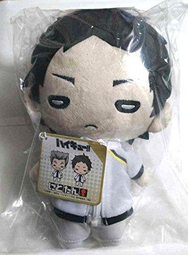Haikyuu Nitotan Big Plush Doll Toy Keiji Akaashi Fukurodani High 23cm Anime F/S -  hnbpdtkafhaf