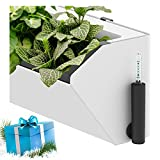 SavvyGrow BloomWall - Vertical Planter with Savvy Edge Technology - Self Watering with Hanging Bracket - Interior Exterior - Balcony Window Vegetable Gardens - Herb Growing Kit and Decors(1,Ivory)