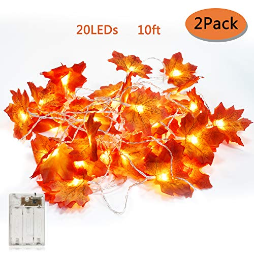 Most Popular Indoor String Lights