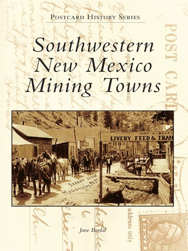 Southwestern New Mexico Mining Towns (Postcard History Series)