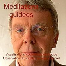 Méditations guidées : Visualisation - cohérence cardiaque - observation du souffle - le scan corporel   Livre audio Auteur(s) : Louis Genet Narrateur(s) : Louis Genet
