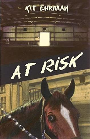 book cover of At Risk