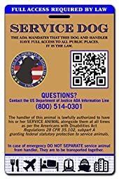 Buttonsmith Holographic Service Dog ID Card - Made in the USA