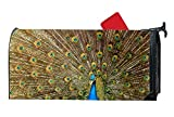 FunnyLife Personalized Mailbox Makover Cover Blue Peacock Mailbox Covers Home,Garden,Yard Magnetic