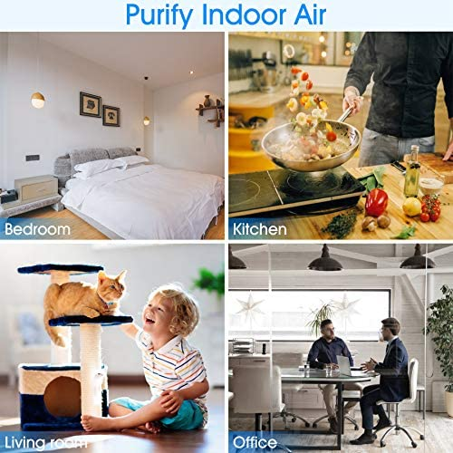 Intelabe HEPA Air Purifier Air Filter with Fragrance Sponge Air Cleaner Eliminate Smoke, Dust,Pollen, Dander Air Purifiers for Home, Bedroom, Living Room, Kitchen and Office (Available for California)