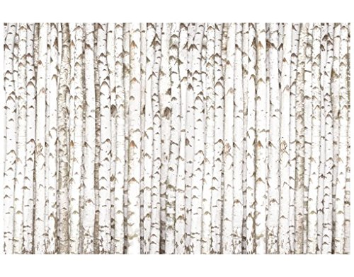 Window Mural Birch Wall window sticker window film window tattoo glass sticker window art window décor window decoration Size: 56.7 x 85 inches