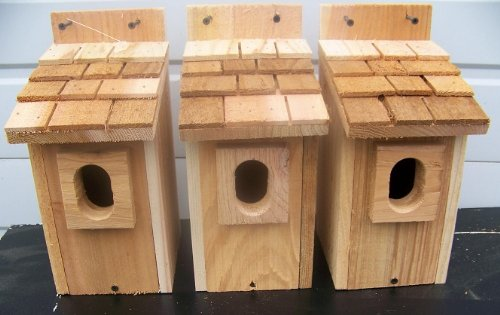 3 Bluebird House with Cedar Shake Roof..peterson Oval Opening..cedarnest