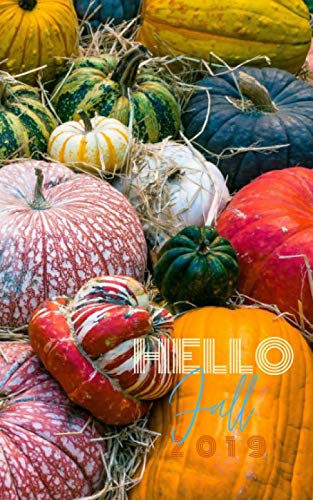 Hello Fall 2019: Blank Dotgrid Notebook Journal Diary To-Do List Book for Fall with Autumn Color pumpkins and gourds on cover, 100 pages 8