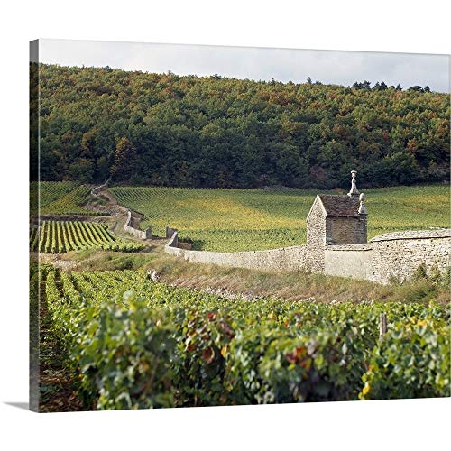 GREATBIGCANVAS Gallery-Wrapped Canvas Entitled Stone Wall Dividing Vineyards, Clos St. Jacques, Gevrey-Chambertin, Cote-dOr, Burgundy, France by 14
