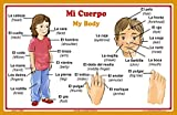 Spanish Language School Poster - Words About Parts of the Body - Wall Chart for Home and Classroom - Bilingual: Spanish and English Text